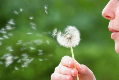 El aire acondicionado, tu aliado contra la alergia