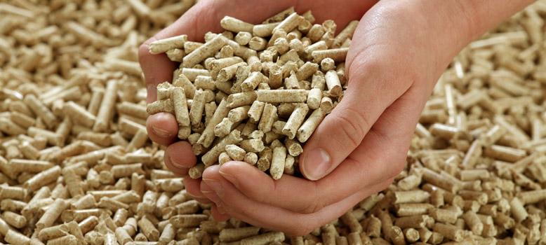 ¿Qué es y cómo comprar el mejor pellet?